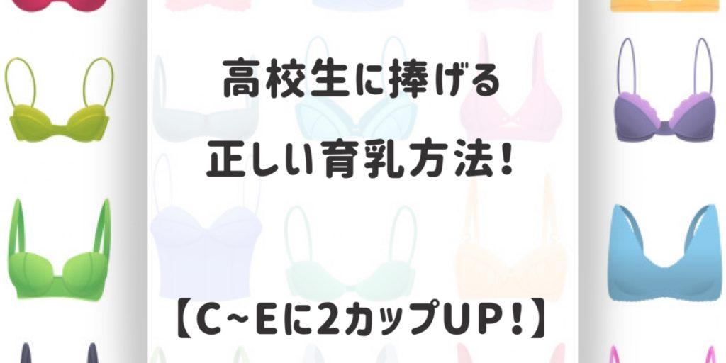 高校生に捧げる正しい育乳方法!【C~Eまで2カップUP!】